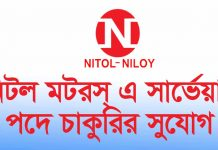 Surveyor Nitol Motors Limited Job Circular